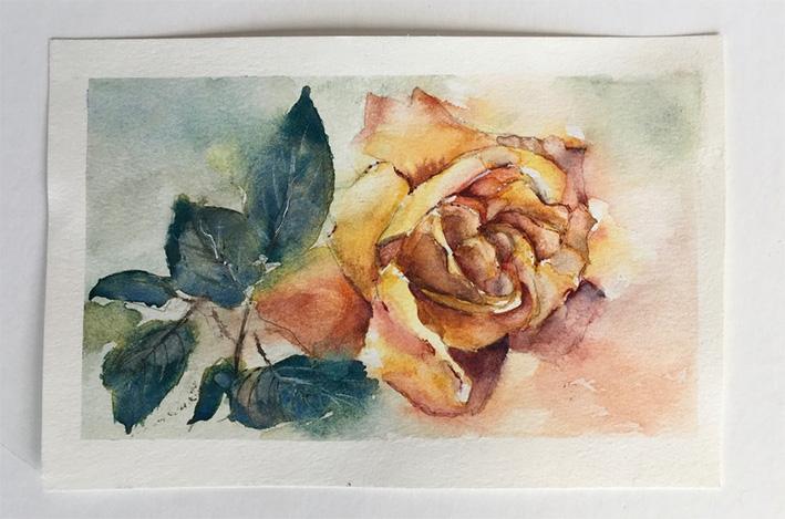 tea rose 1
