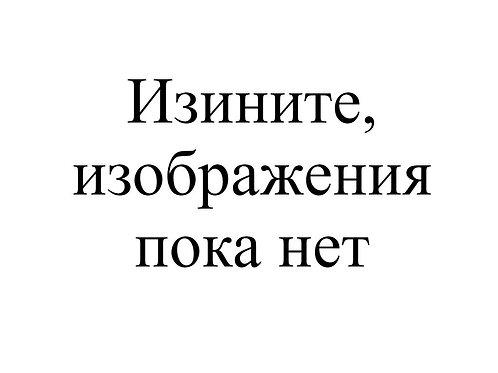 МОСКИТНАЯ СЕТКА С РИС 100*210