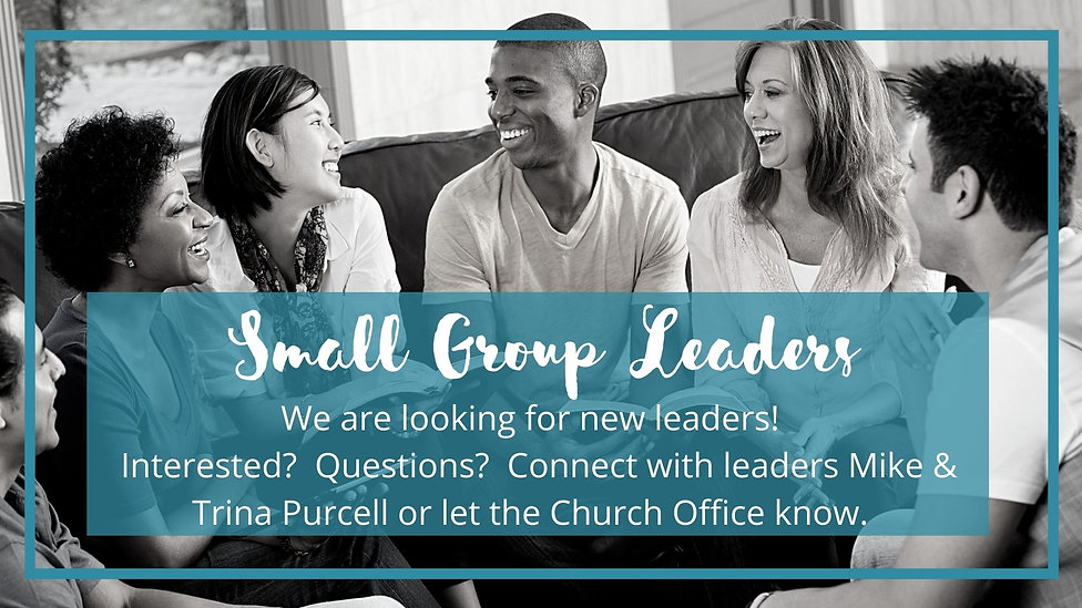 Small Group Leaders.jpg