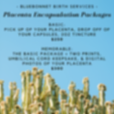 Placenta Encapsulation Packages.png