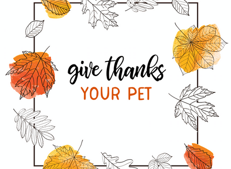 Free Gratitude Table Top Pages for Your Holiday Dinner!