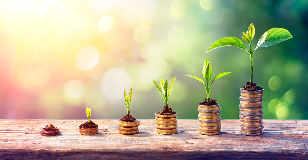 Money Growth Concept - Plants On Coin Stacks In Increase.jpg