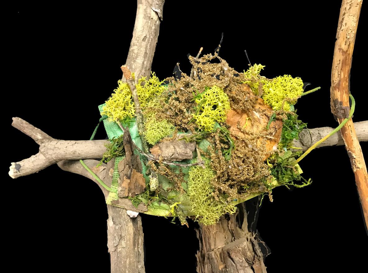 Sponge Moss Mask