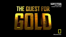 The Quest For Gold History Network