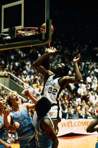 magic-basket-bird-1979.jpg