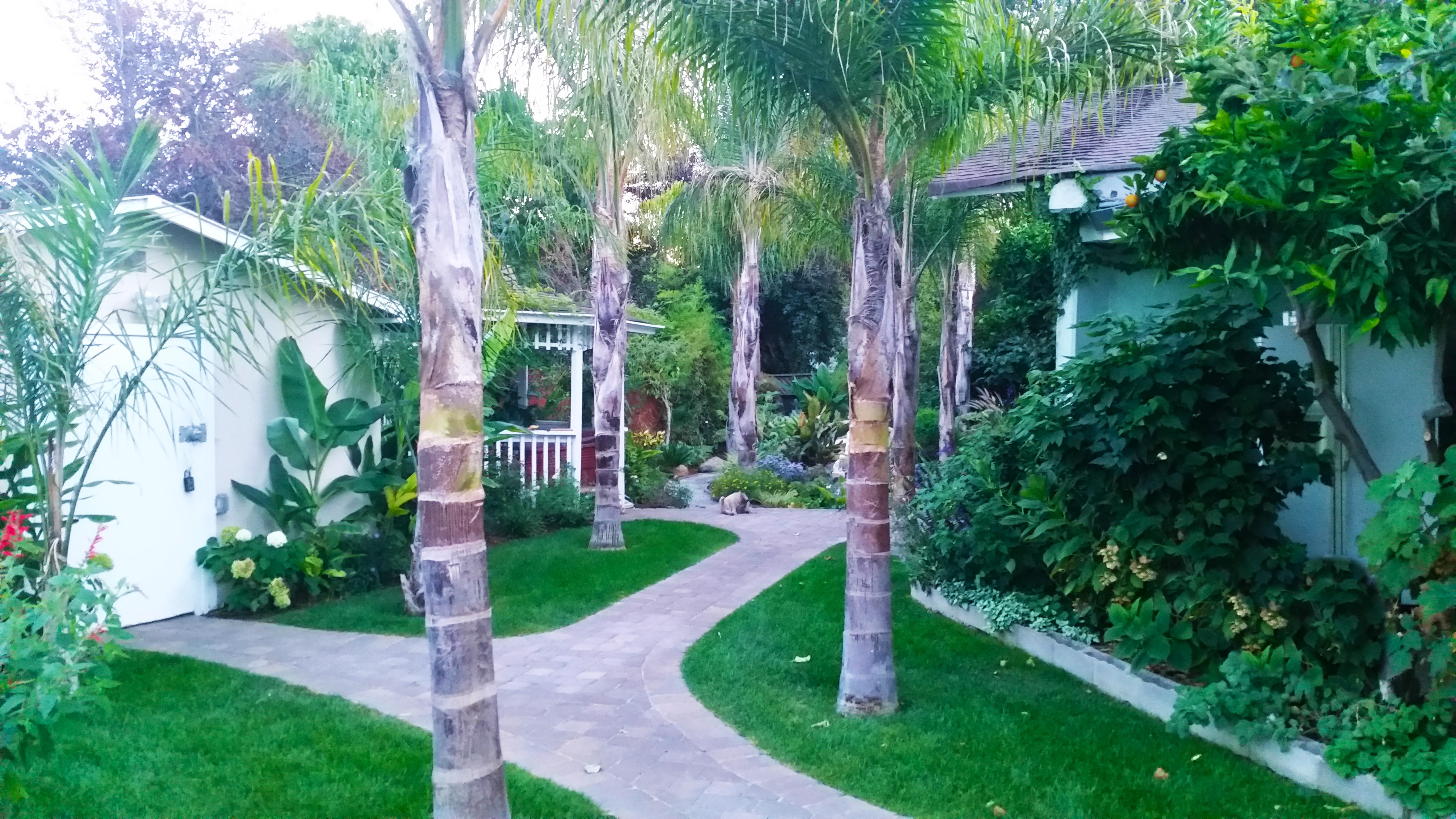 Path Way Garden