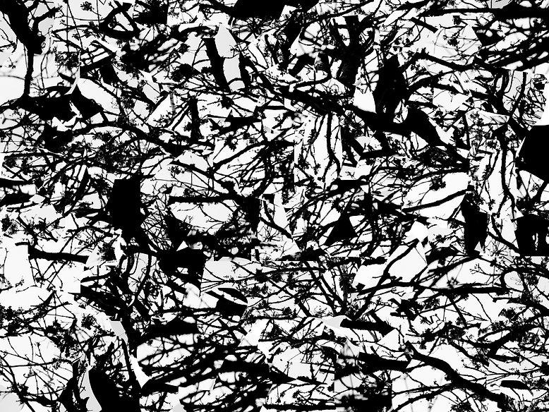fragmentinglandscape.jpg