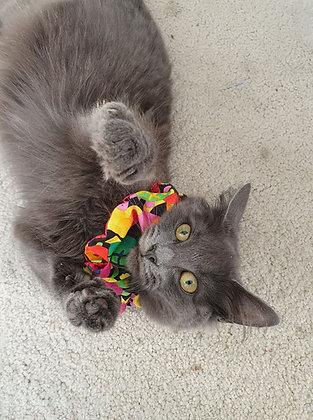 Cat Collar Ruffles