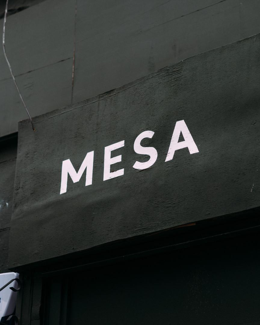 Mesa (4x5 Images)-2.jpg