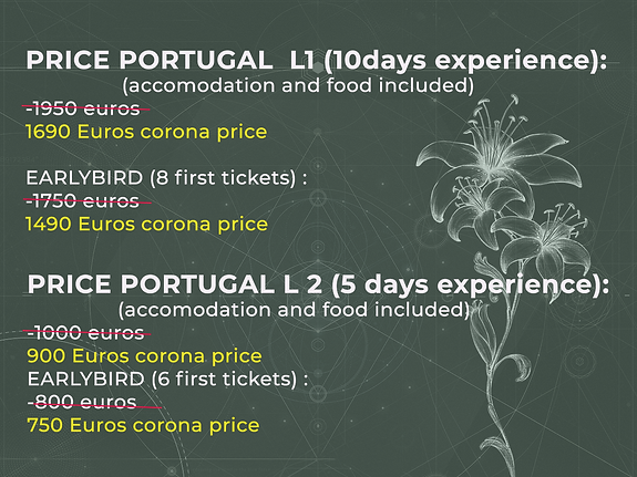 prices portugal2020 discount.png