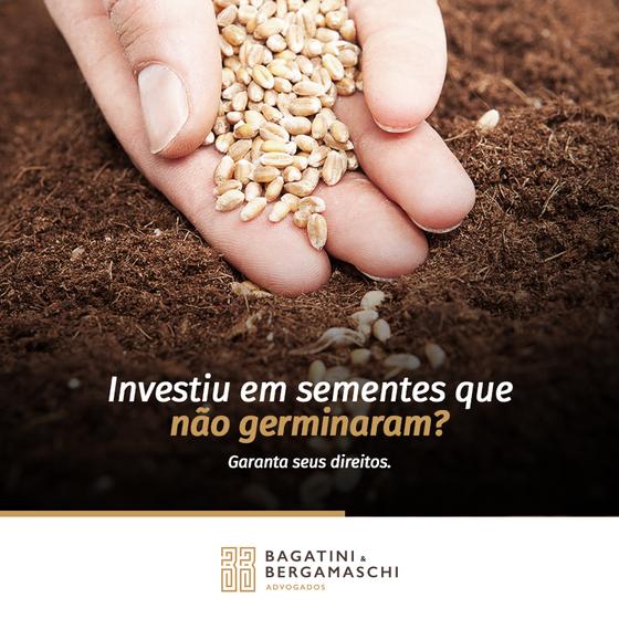 Investiu em sementes que não germinaram?