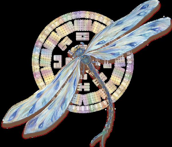 Dragonfly gene keys.png