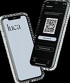 Loadingscreen_Check_Luca.png