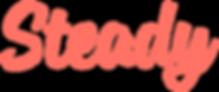 Steady_company_logo.svg.png