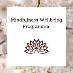 Mindfulness Wellbeing Programme Link