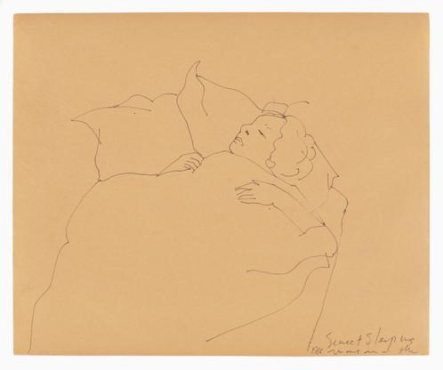 Sweet Sleeping Mayan, 1986