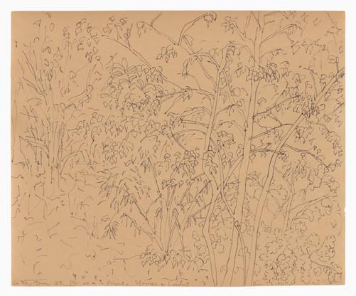 Flowers, c.1985