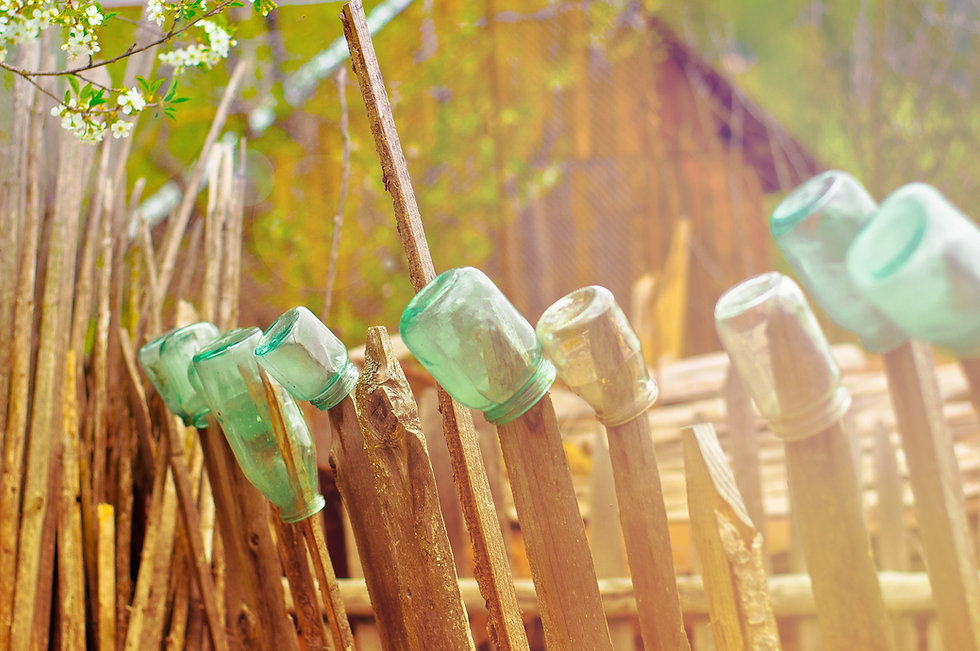 Bottles on the Fence