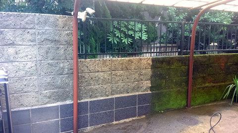 川崎市で植木屋が高圧洗浄