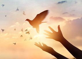 """""""Letting Go – Holding On"""""""