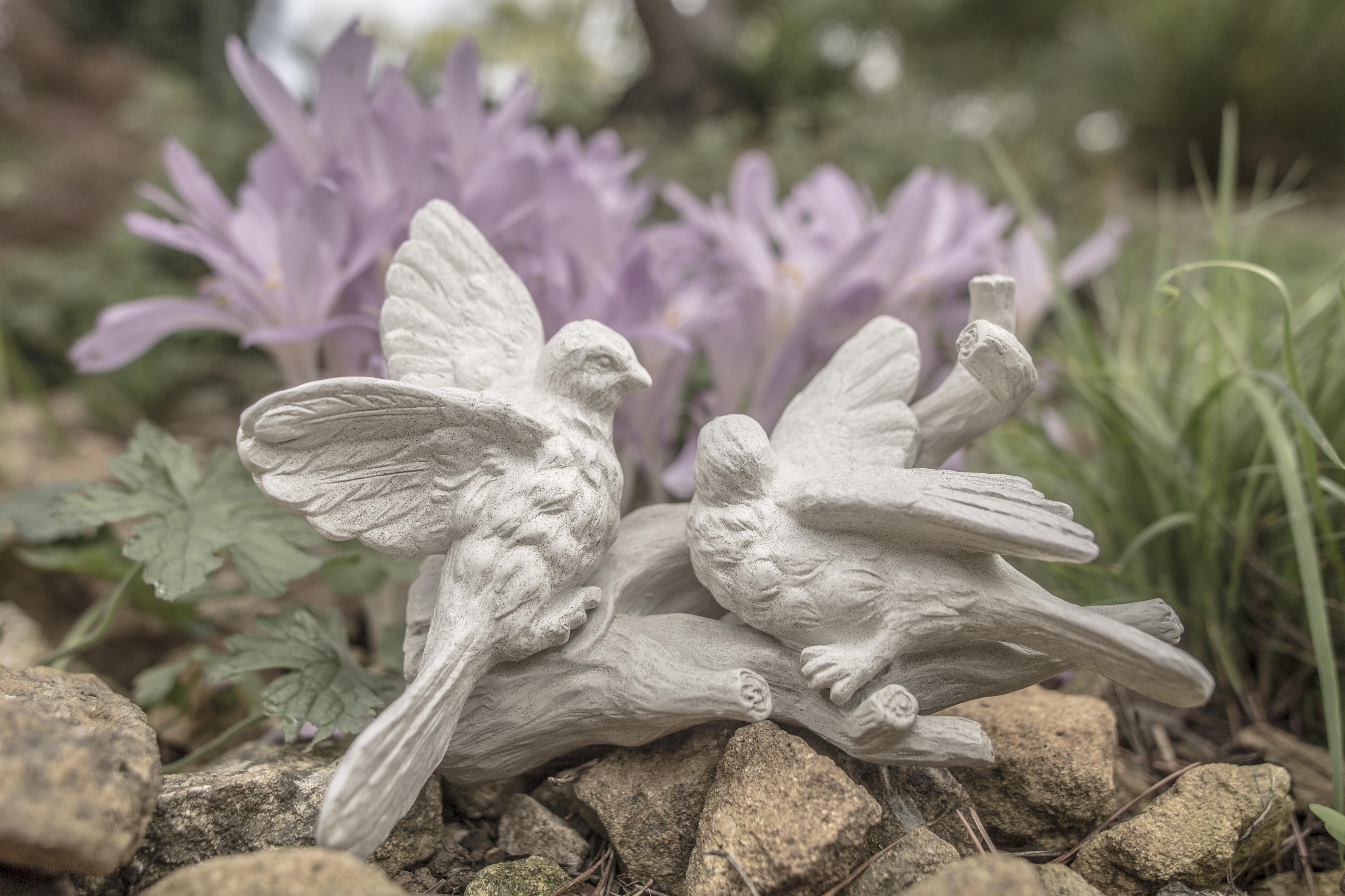 Acanthus Garden-3