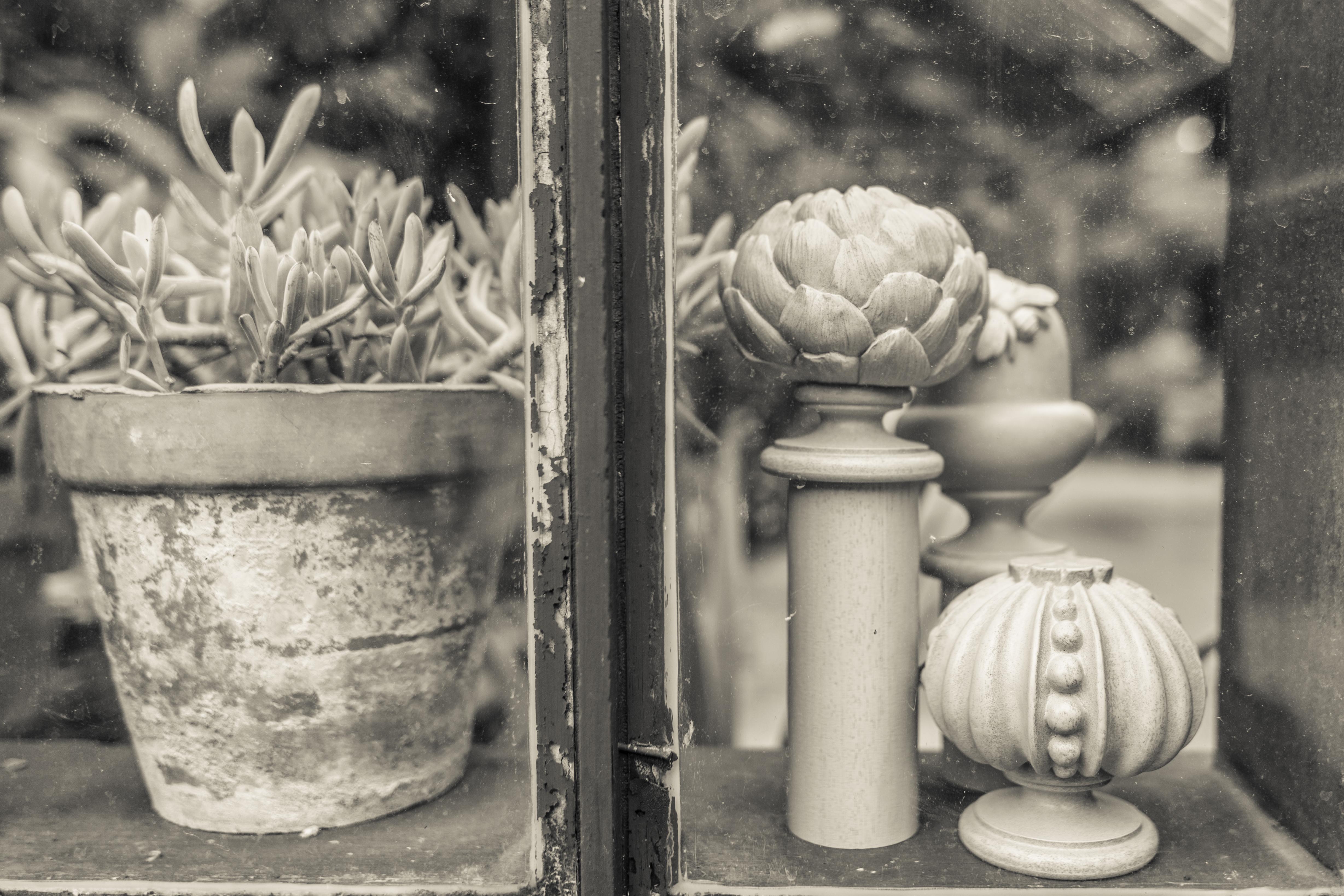 Acanthus Garden-34