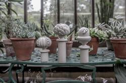 Acanthus Garden-36