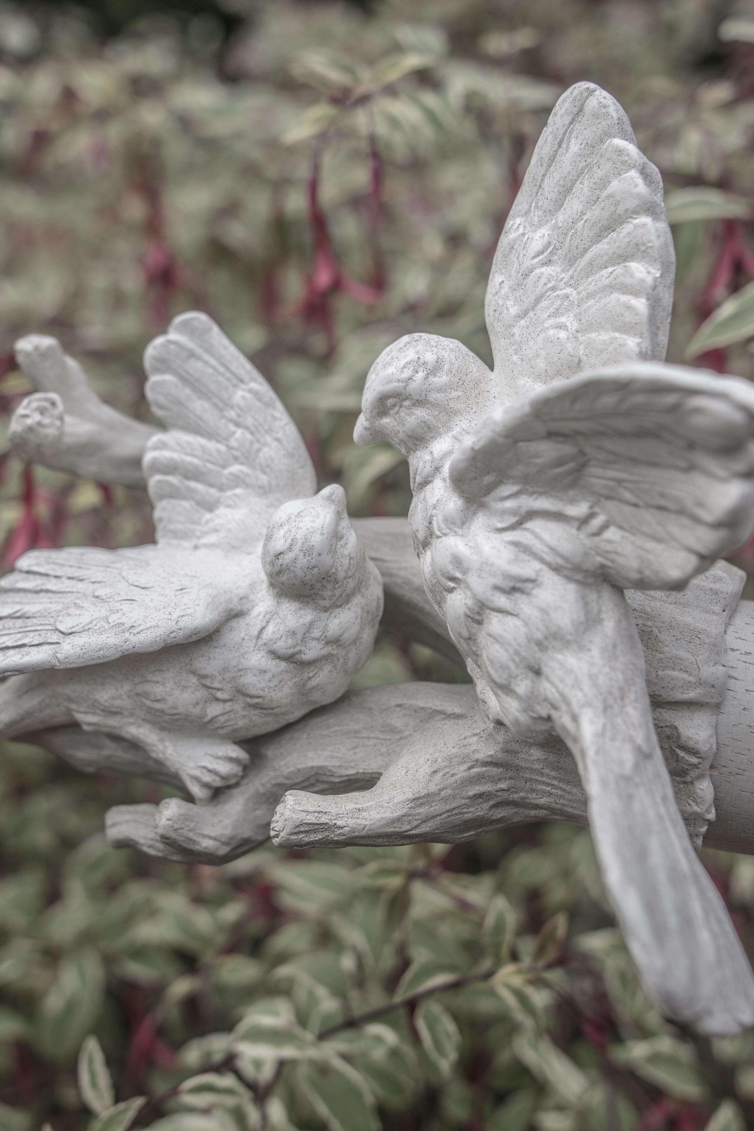 Acanthus Garden-25