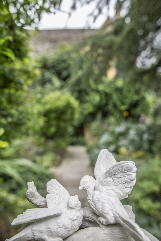 Acanthus Garden-29