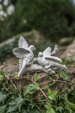 Acanthus Garden-21
