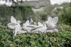 Acanthus Garden-28