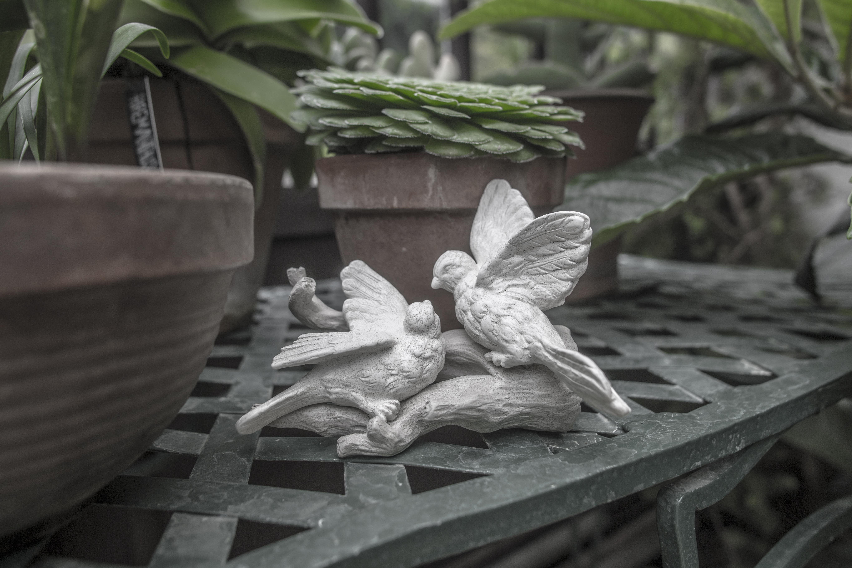 Acanthus Garden-30