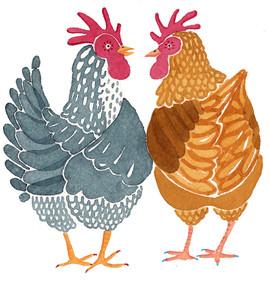 friends-chickens.jpg