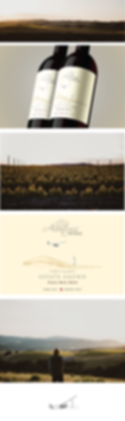 wine-label-porta.png