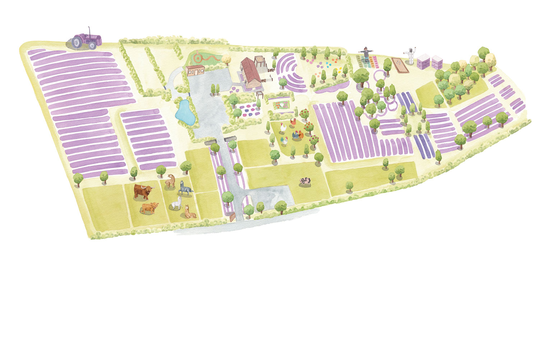 Lavender-farm-map-web May 2020