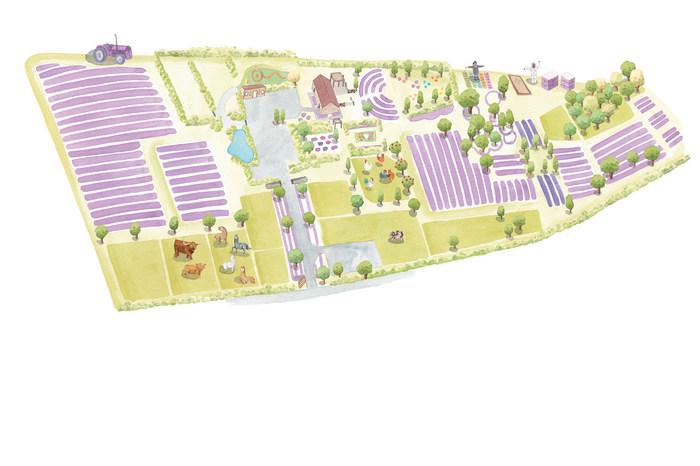Lavender-farm-map-web May 2020.jpg