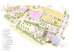 Lavender-Farm-Web-May2020