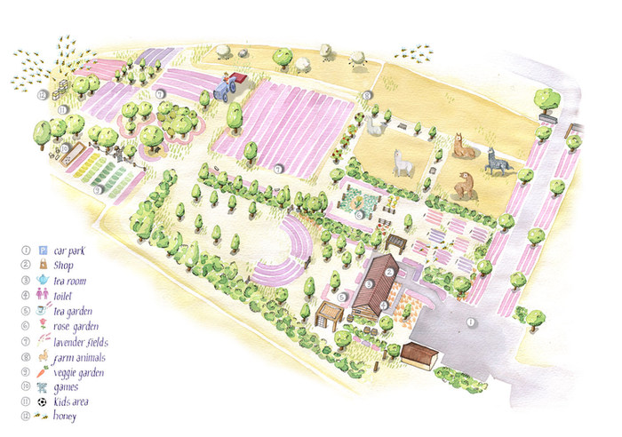 Lavender-Farm-Web-May2020.jpg