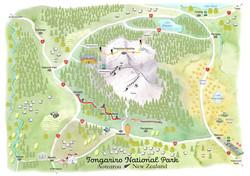 Tongariro-web-May-2020