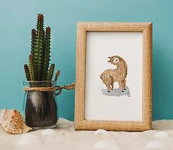 13.-Alpaca-frame.jpg