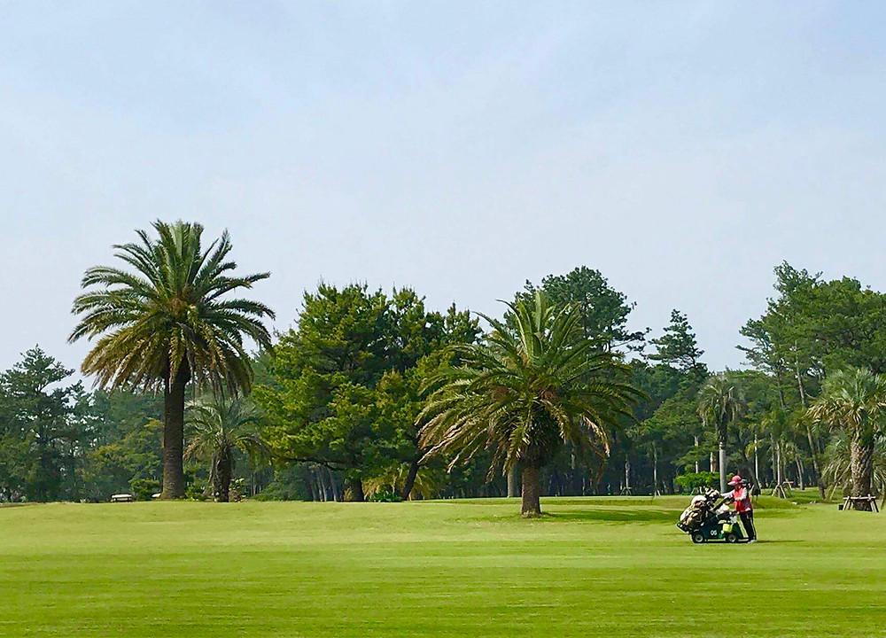 宮崎カントリークラブ 電動立ち乗りゴルフカート