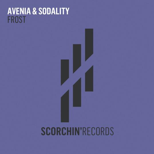 AVENIA & SODALITY 'FROST'