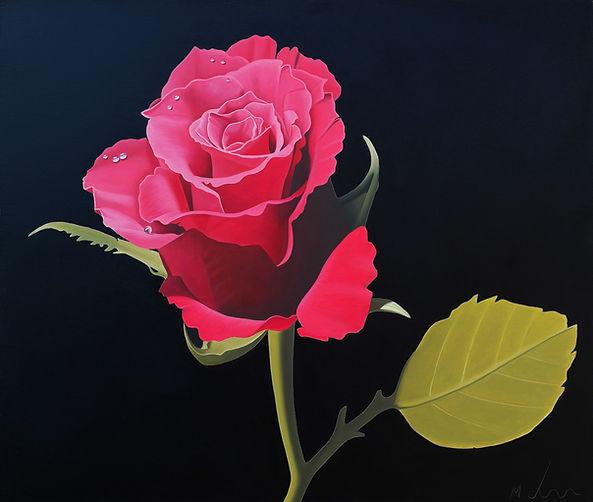 Red Rose.jpg