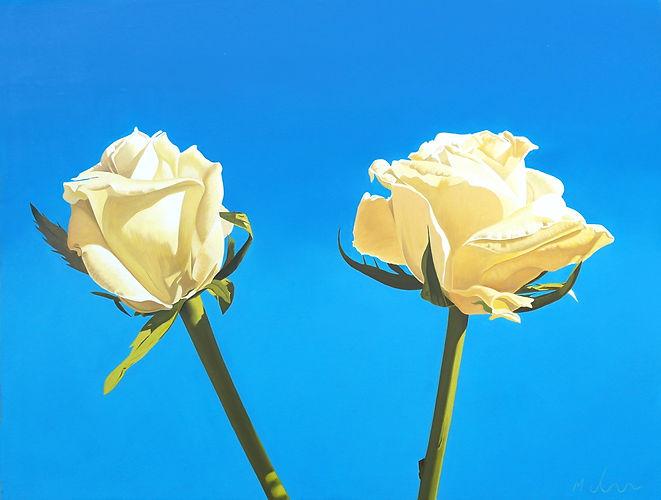 Sky Roses.jpg