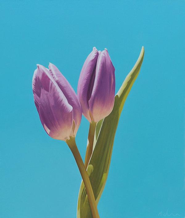 Tulips in Sunlight.jpg