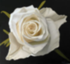 An oil painting of a white rose