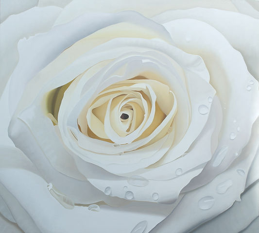 A photo realistic oil painting of a white rose