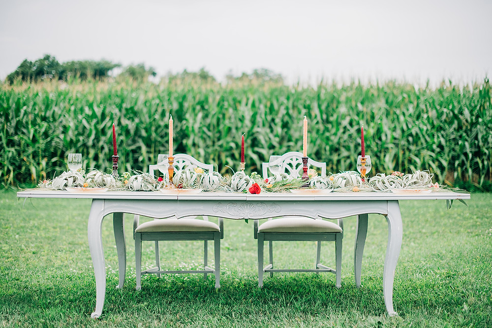 Outdoor Wedding Venues in Maryland