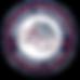 Gonzaga Chest Logo.png