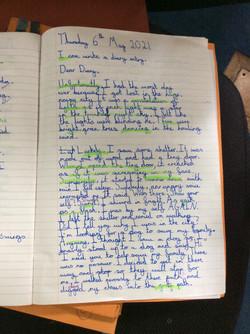 Willow's wonderful writing!